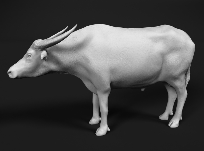 Domestic Asian Water Buffalo 1:64 Standing Male 3d printed