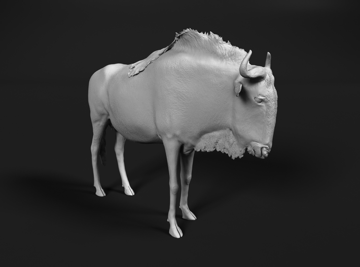 Blue Wildebeest 1:20 Standing Female 3d printed