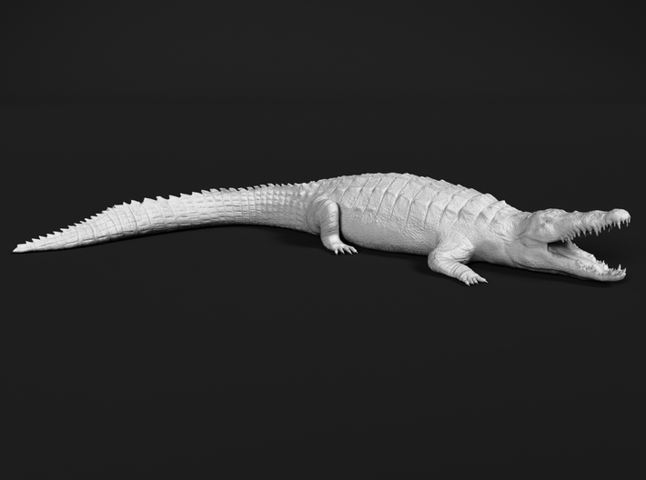 Nile Crocodile 1:48 Mouth Open 3d printed