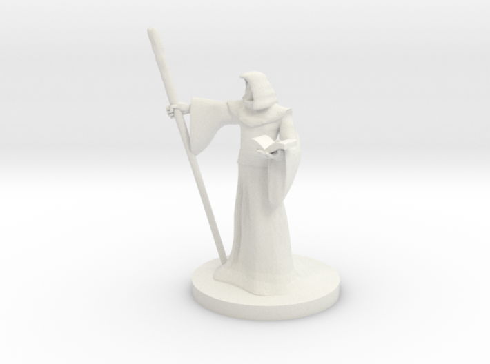 Human Wizard with Staff 3d printed