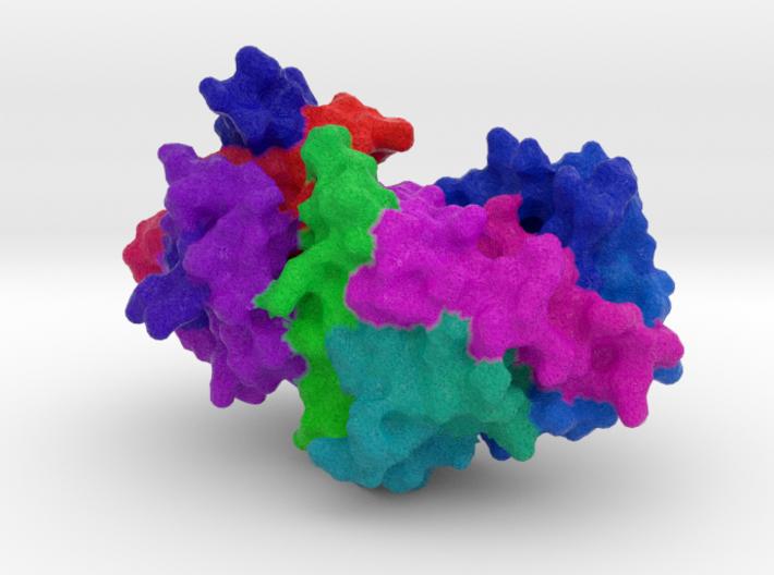 α1-Antitrypsin 3d printed