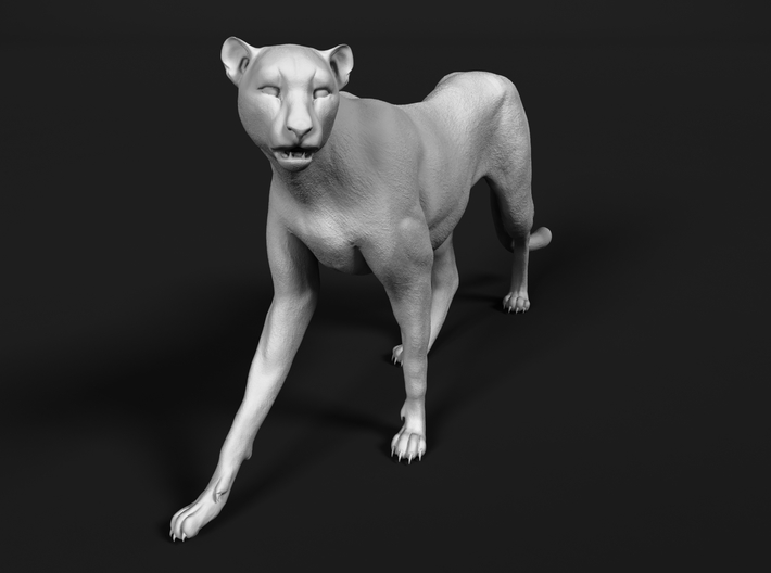 Cheetah 1:45 Walking Female 2 3d printed