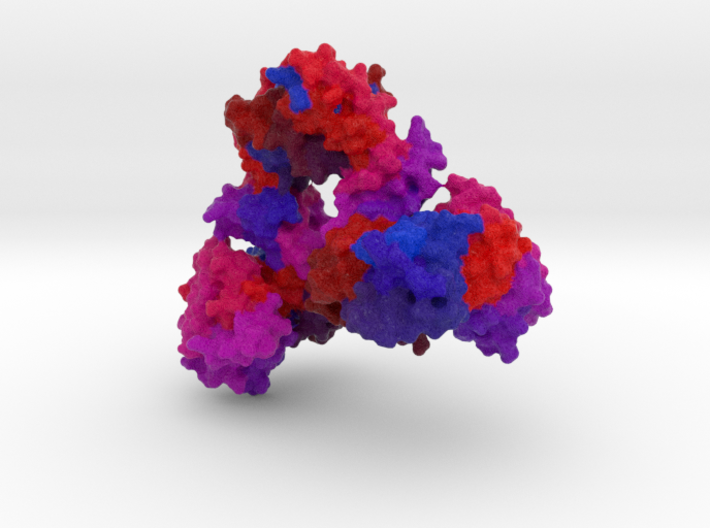 Aspartate Carbamoyltransferase 3d printed