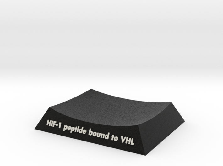 VHL_HIF1_AR_Base 3d printed
