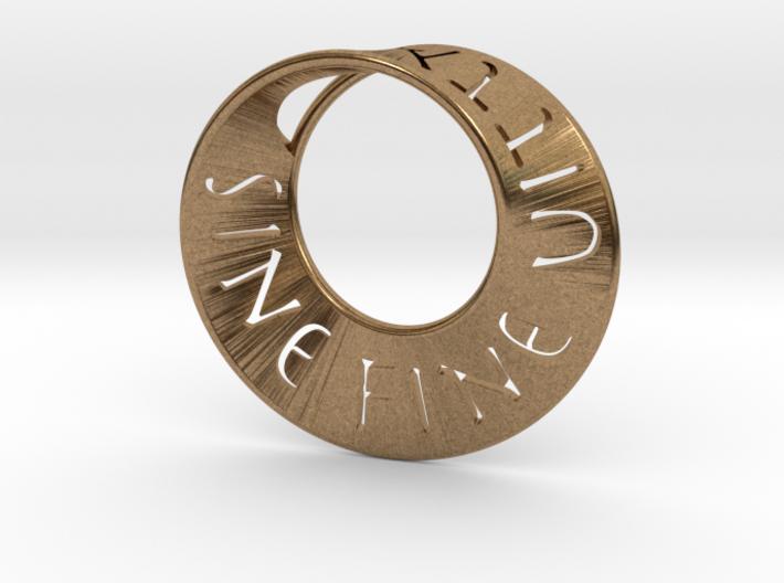Sine Fine Mobius 3d printed