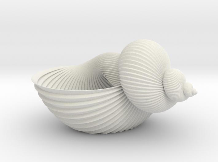 Shell Flower Pot 3d printed