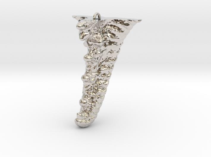 Knobby Starfish Leg Pendant 3d printed
