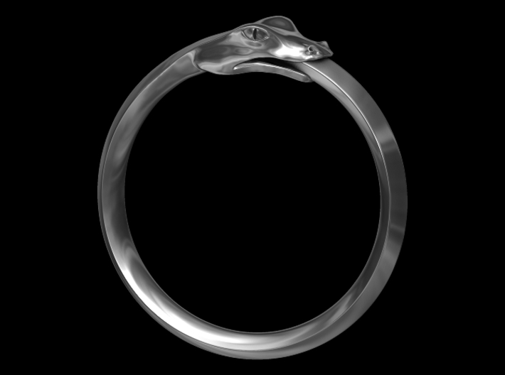 Ouroboros Ring 3d printed Computer Generated Image