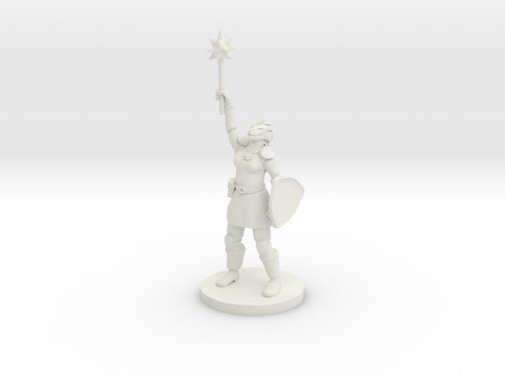 Female Dragonborn Paladin / Cleric 3d printed