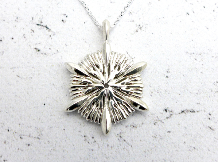 Astrocyathus pendant 3d printed Astrocyathus pendant in polished silver