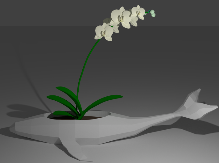 Whale Planter 3d printed
