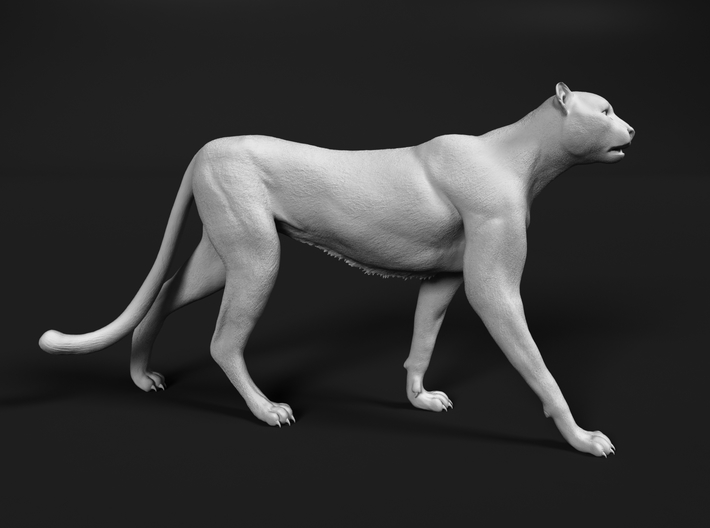 Cheetah 1:20 Walking Male 2 3d printed