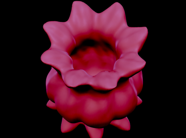 Flower Sculpt 3d printed angle view