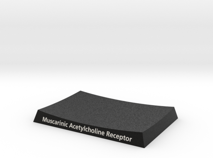 Muscarinic Receptor Base 3UON 3d printed