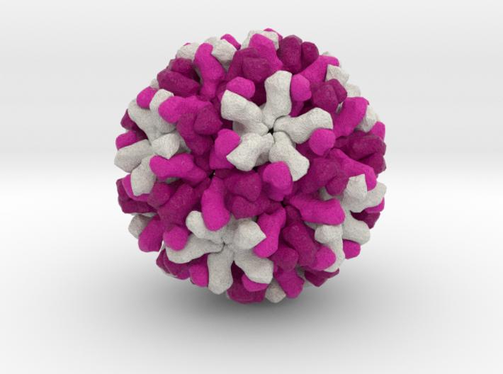 Norwalk Virus 3d printed