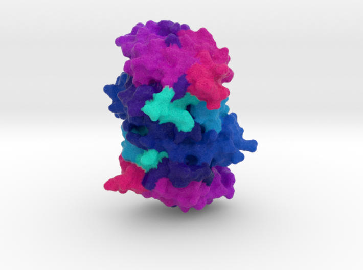Shikimate Kinase 3d printed