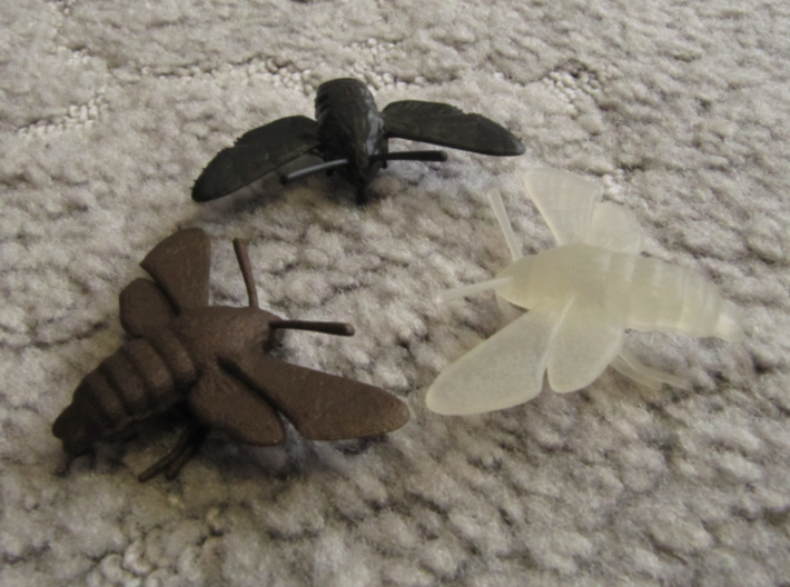 Hummingbird Hawk-Moth Pendant 3d printed Black High Definition Acrylate, Frosted Ultra Detail and Matte Bronze Steel (clockwise from the top)