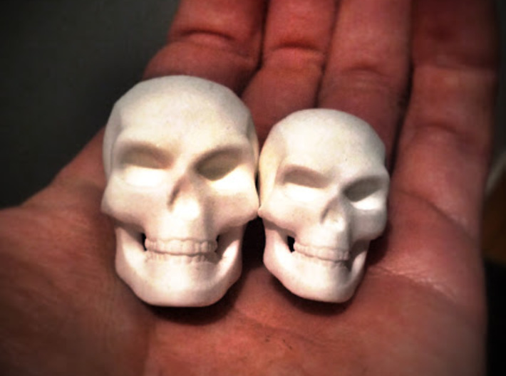 3D Printed Skull - Large 3d printed A photograph of my small and large skulls together to show the size difference. Each skull sold separately