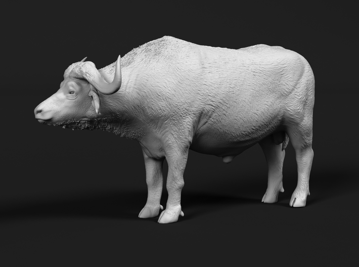Cape Buffalo 1:12 Standing Male 3 3d printed