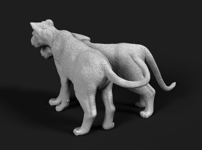 Lion 1:25 Cubs distracted while playing 3d printed