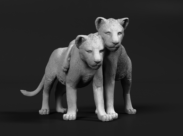 Lion 1:45 Cubs distracted while playing 3d printed
