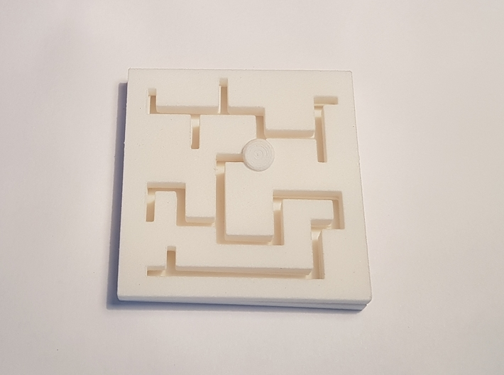 Plate Maze Puzzle 3d printed