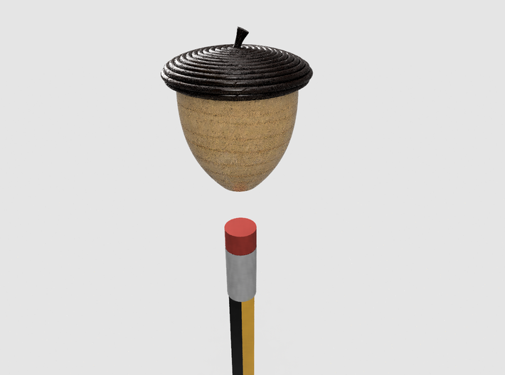 Acorn Pencil Topper 3d printed Acorn Split