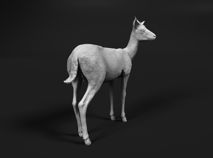 Thomson's Gazelle 1:16 Standing Female 3d printed