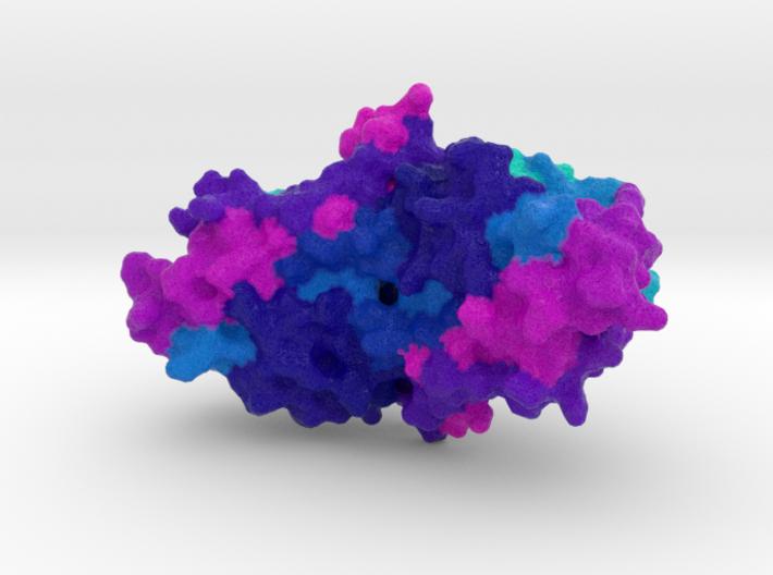 CRISPR Cmr7 3d printed