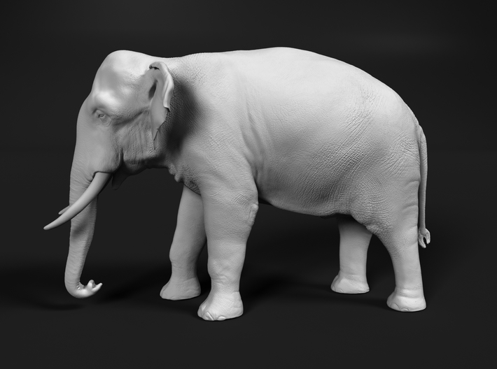Indian Elephant 1:76 Standing Male 3d printed