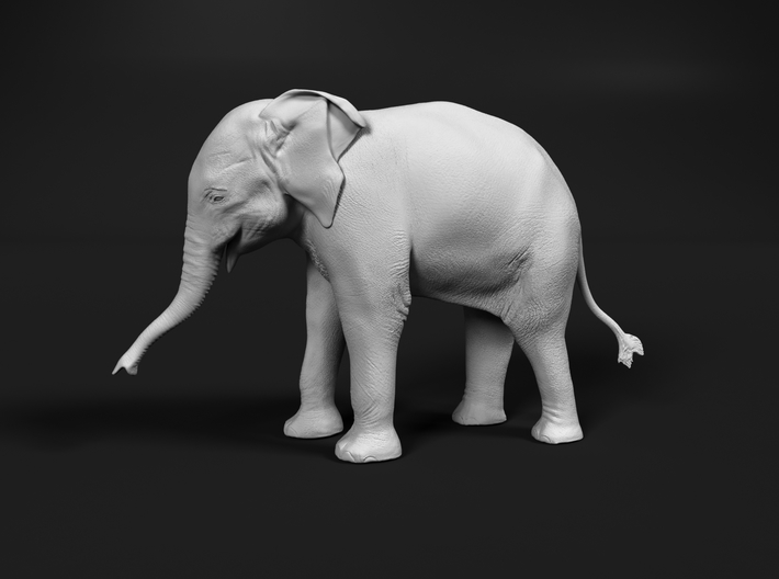 Indian Elephant 1:72 Standing Female Calf 3d printed