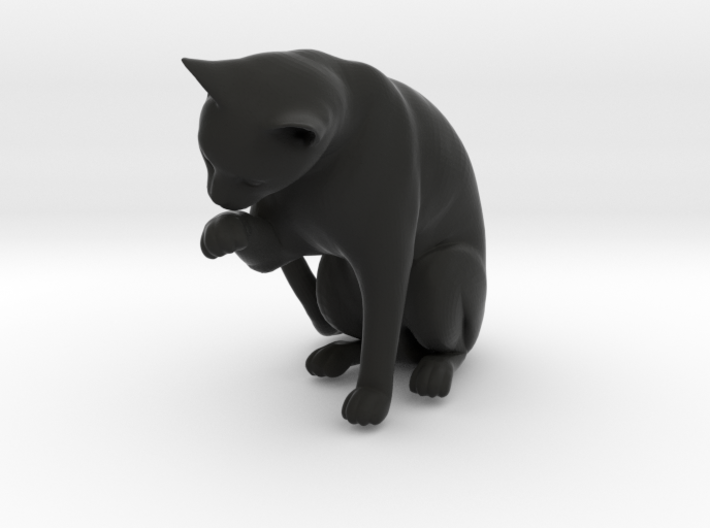 Cat Cleaning Paw 3d printed