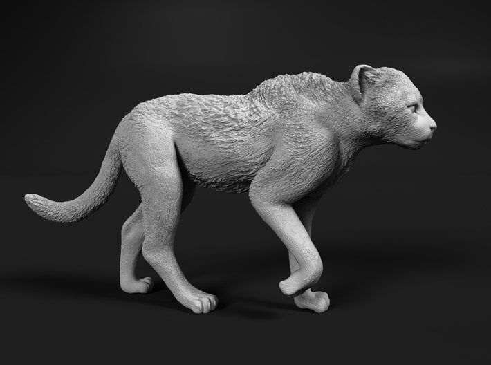 Cheetah 1:16 Walking Cub 2 3d printed