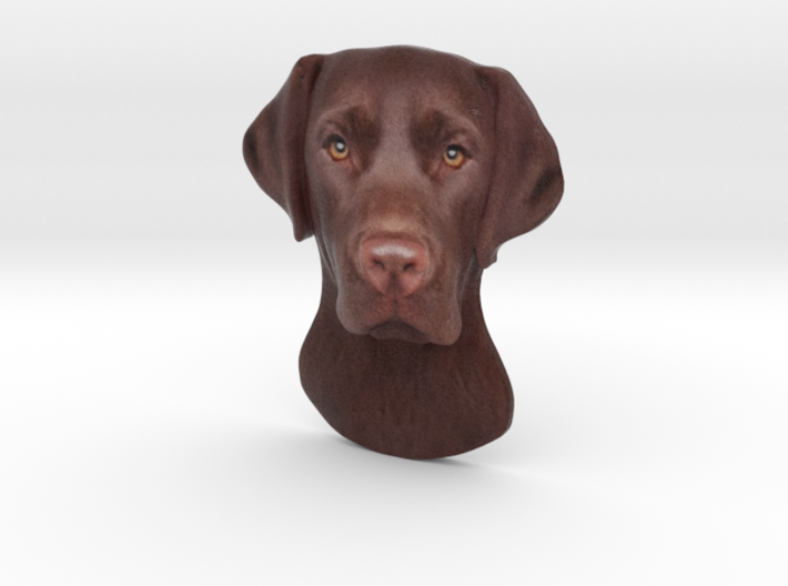 Reliëf / Brown Labrador / 180mm / art.#MK014 3d printed
