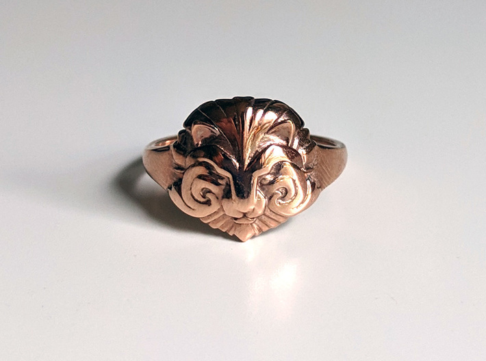 Ring of Courage 3d printed