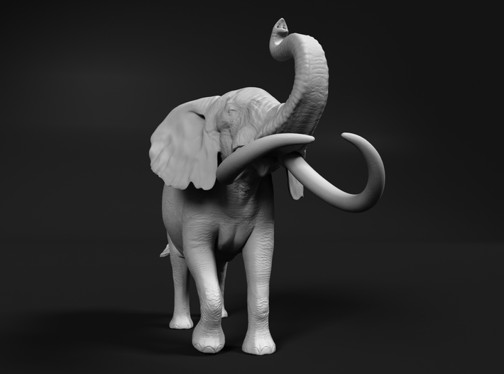 African Bush Elephant 1:16 Aggressive Male 3d printed
