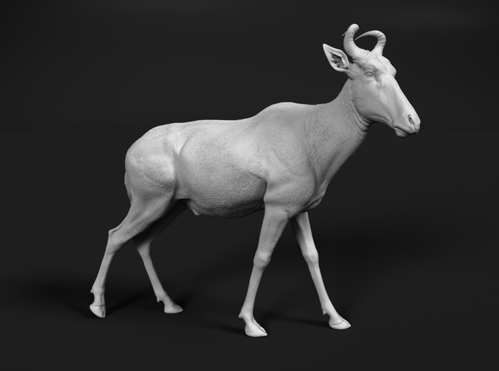 Lichtenstein's hartebeest 1:22 Walking Male 3d printed