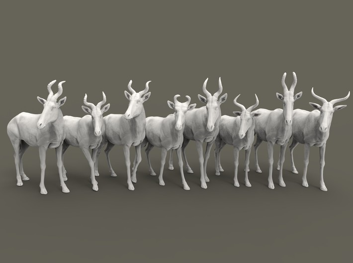 Hartebeest Set 1:87 eight different subspecies 3d printed