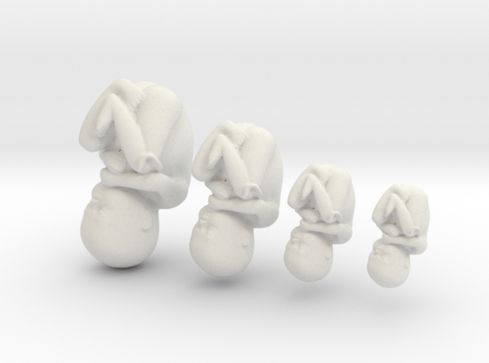 Human Baby Growing Illustration (1:1 scale) 3d printed