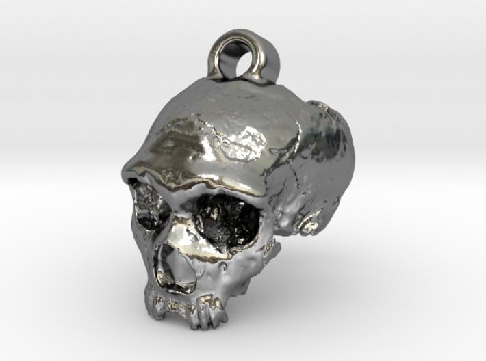 Neanderthal skull 3d printed