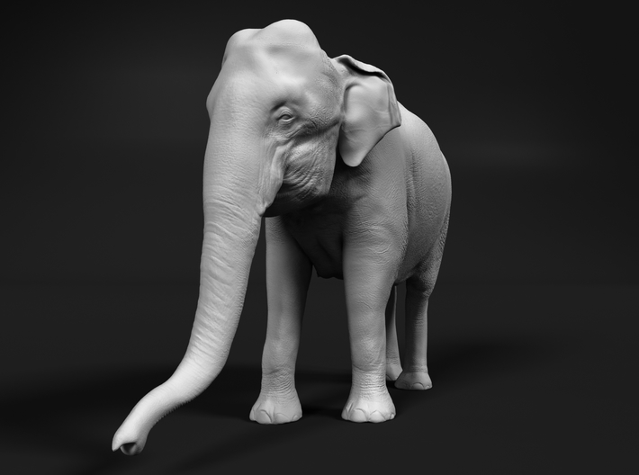Indian Elephant 1:160 Standing Female 1 3d printed