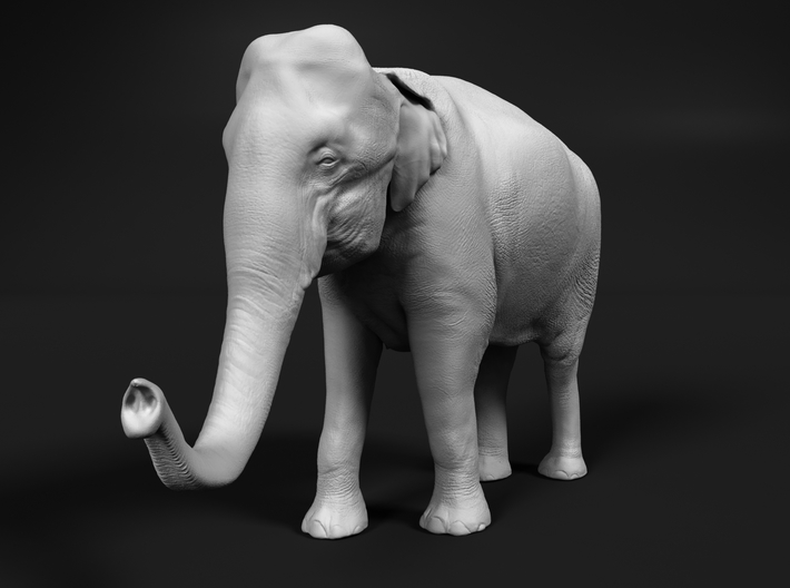 Indian Elephant 1:160 Standing Female 2 3d printed
