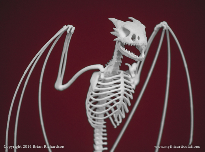 Horned Wyvern Skeleton Perched 3d printed