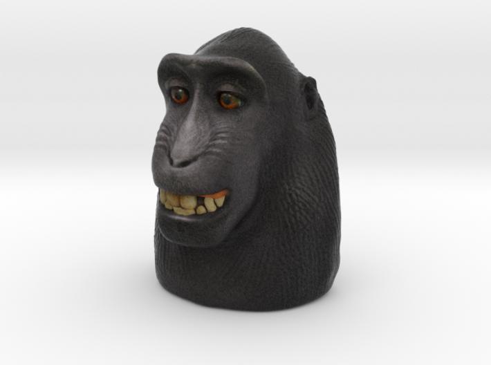 Monkey selfie 3d printed