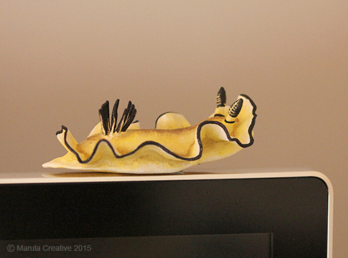 Becia the Nudibranch 3d printed Hand Painted White Strong & Flexible Polished - on computer monitor!