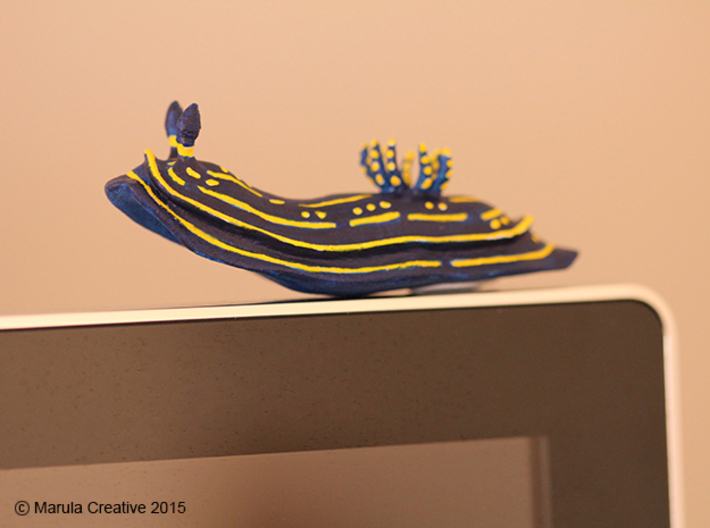 Lani the Nudibranch 3d printed Hand Painted White Strong & Flexible Polished - on computer monitor!