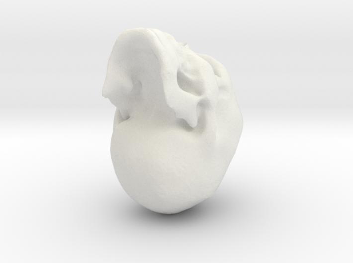 skull2 3d printed