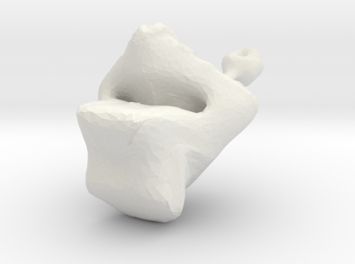 what is it? 3d printed