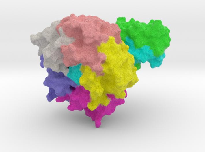 E-coli Toxin 3d printed