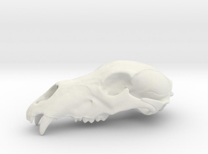 Bear Skull. WT-07. 6cm. 3d printed